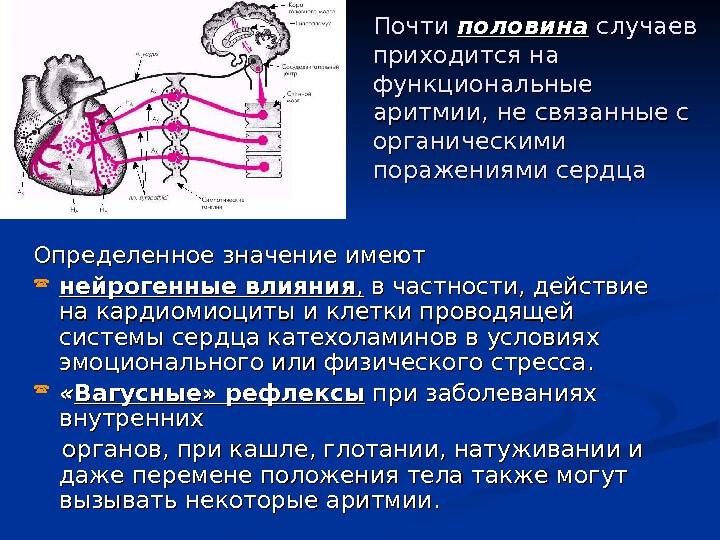 Podzhelud_aritm2