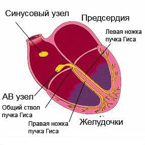 sunys_aretm1