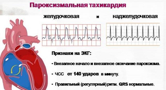 gormonalnaya2