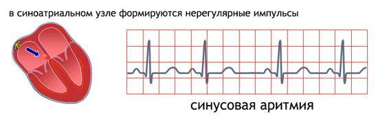 Simpt-podzhel-arit
