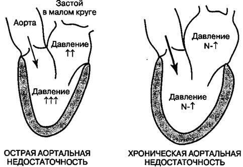 image336